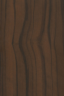 A373-LATIN-WALNUT